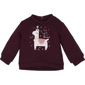 12468 Sweatshirt ürün görseli